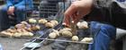 cuisineaufeudebois2_crie-cuisine-sur-feu-de-bois-1.jpg