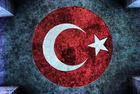 formationcuisinesauvageaufildeschemins_1654955-mozaik-turk-bayragi.jpg