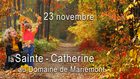 journeestecatherineaudomainedemariemont_bandea-fb-evenement-st-cath-2019.jpg