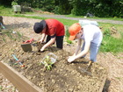 projetscolairepotager_petits-conseillers-com-messancy3.jpg
