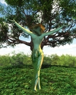 visitegratuiteduparclesarbresetlamytho_visite-gratuite-du-parc-les-arbres-et-la-mythologi.jpg